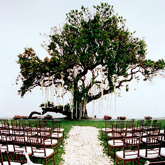Wedding Outside Decorations Pictures : Beautiful outdoor wedding reception decoration design ideas