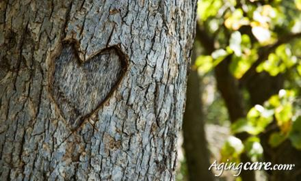 5 Real-Life Love Stories That Could Make Cupid Cry  - love romantic tree heart
