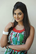 Neha deshpande Photos at Dil Diwana press meet-thumbnail-14