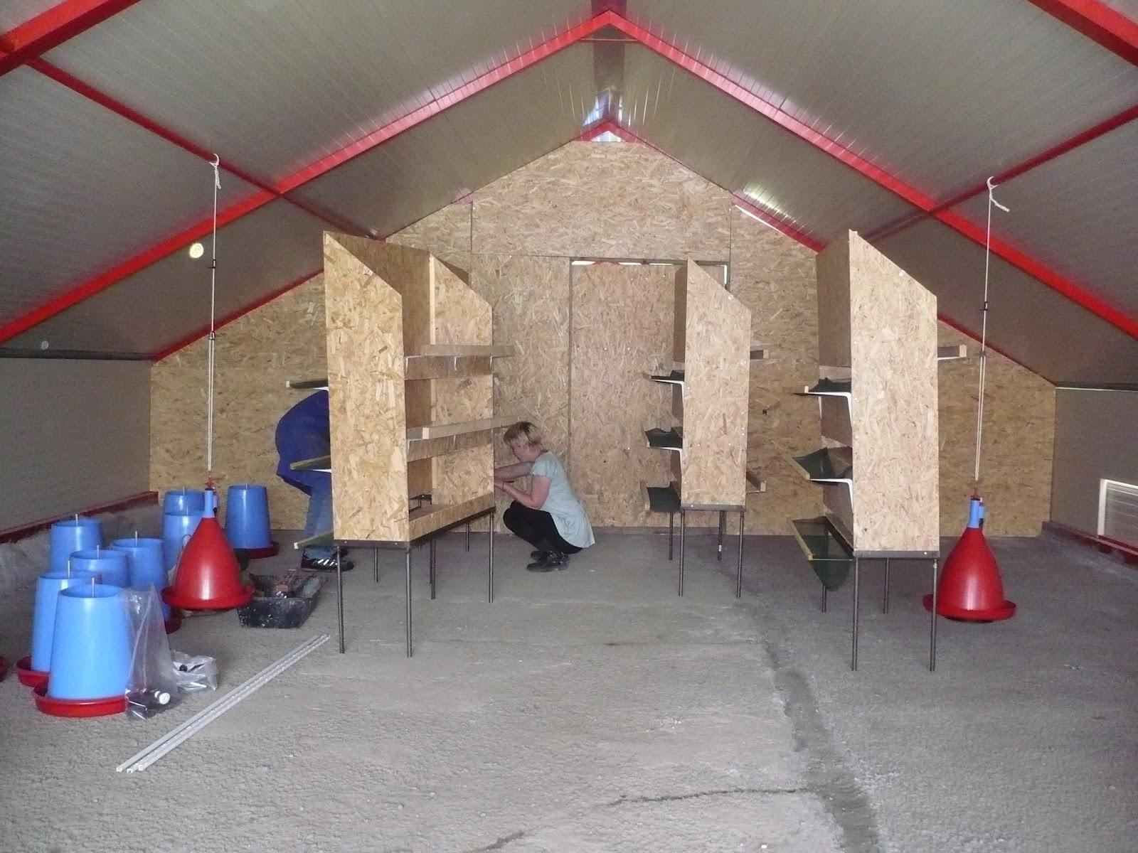 Agristory construction du poulailler for Interieur poulailler