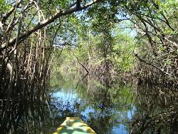 ...na canoa no rio Sagi...