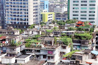 http://www.livefromtheroof.com/beijing-to-add-100k-square-meters-of-green-roofs/