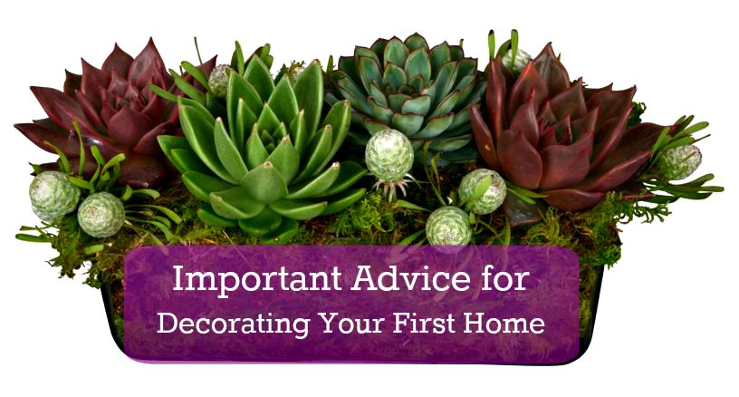 10 Key Tips For Decorating Your First Home - Classic Casual Home