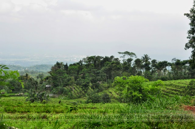 Indahnya Alam Segar Pegunungan Limpakuwus, Sumbang - Banyumas, Jawa Tengah. Foto oleh KLIKMG Fotografer Indonesia