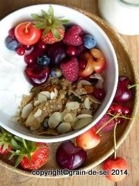 http://salzkorn.blogspot.fr/2014/07/knuspermusli-mit-schafsmilchjoghurt.html