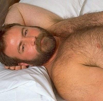hairy bear xxx jack