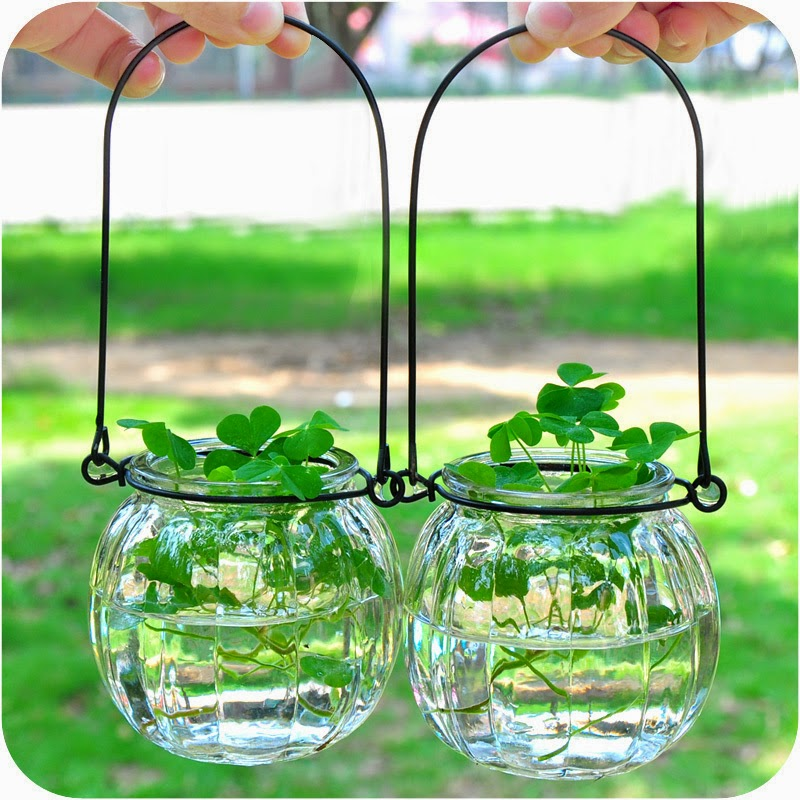 Jardins minimalistas larissa carbone for Minimalismo caracteristicas