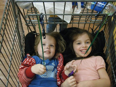 Sasha & Samantha in Grocery Basket