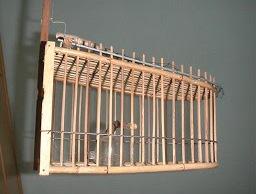 Cara Membuat Jebakan Burung | Arena Burung