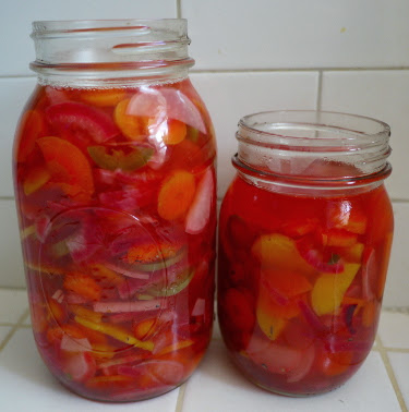 carrot jalapeno red onion and radish pickles