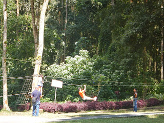 Treetop Adventure at Botanical Garden