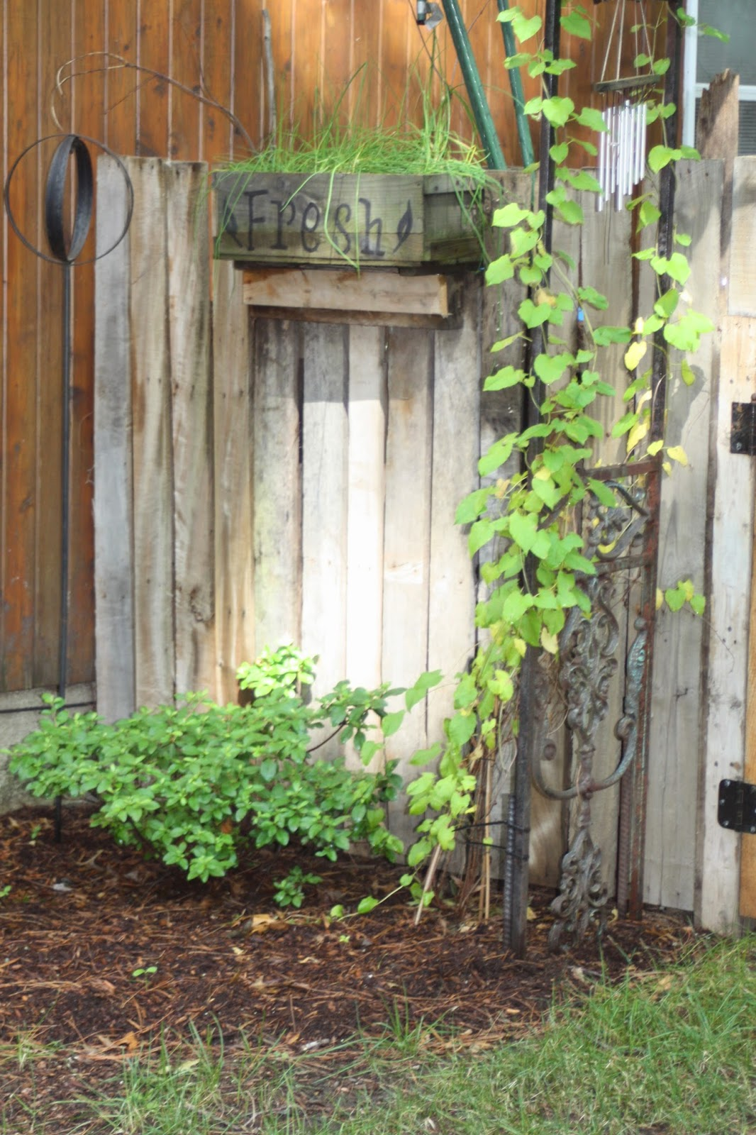 Antique Wrought Iron Arbor with a DIY Pallet Fence