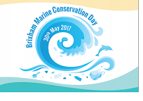 Brixham Marine Conservation Day