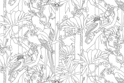 Designcardamom pareti su cui disegnare for Come costruire una palestra nella giungla