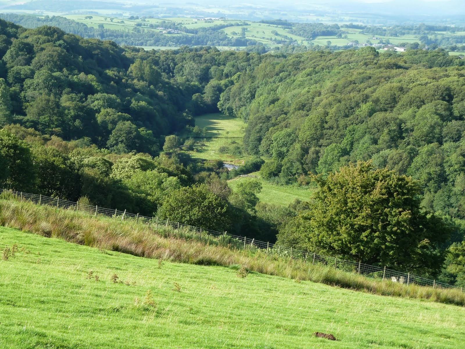 Roeburn Valley