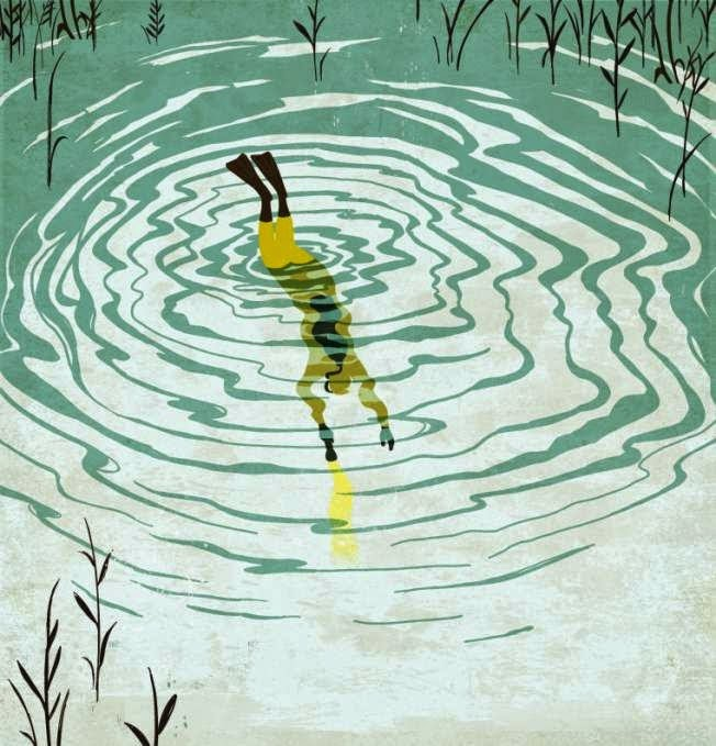 a diver in a lake illustration by Emiliano Ponzi