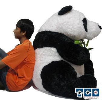 foto Boneka Panda Giant