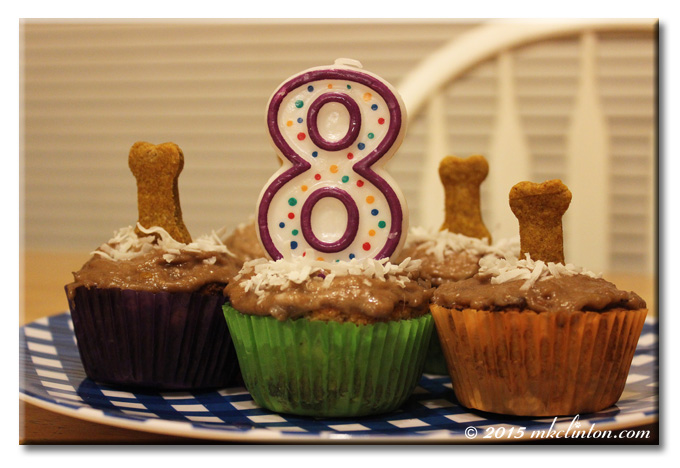 Pupcakes with dog bones and a #8 candle