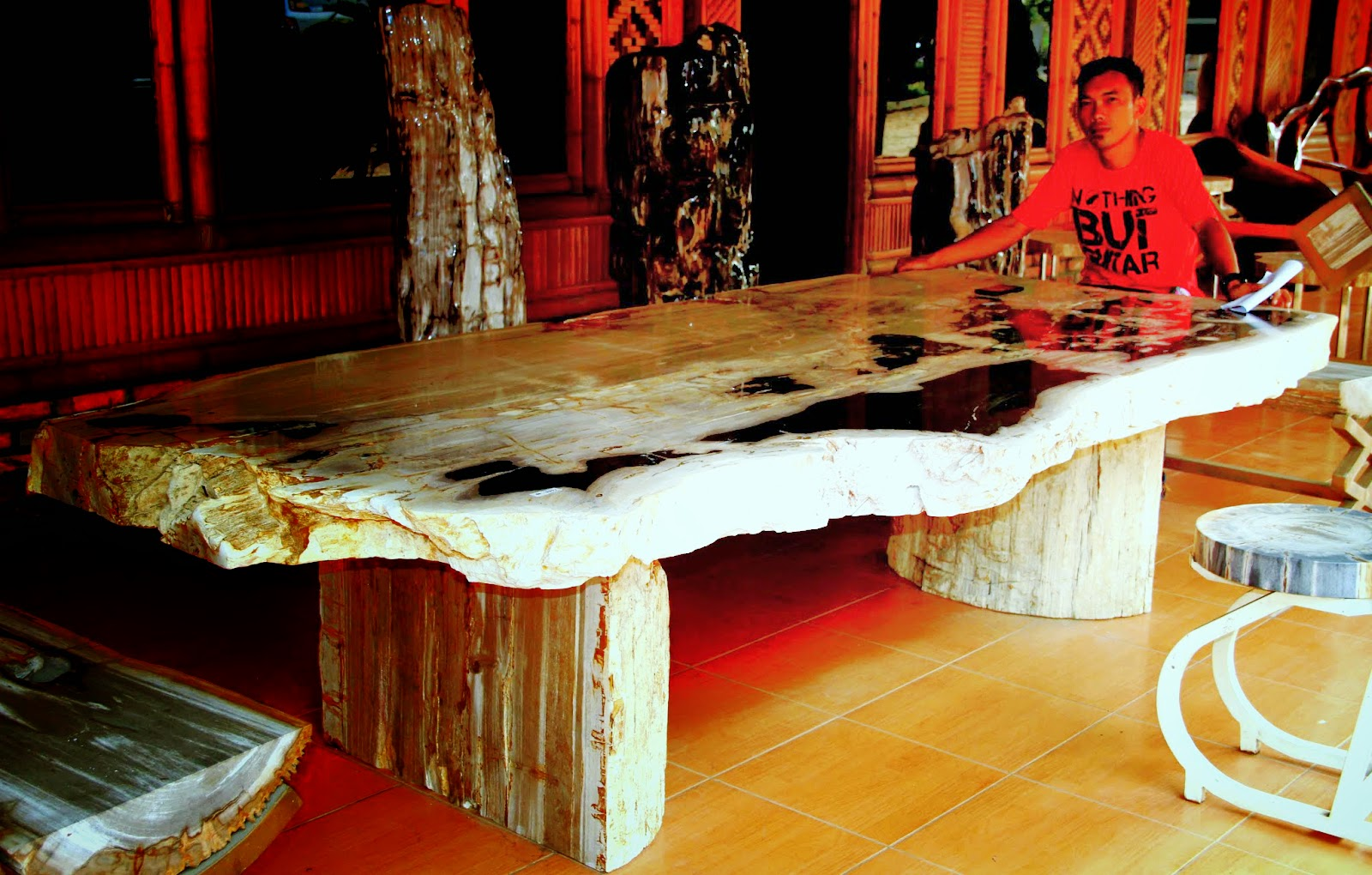 PETRIFIED WOOD DINING TABLE TOPS.