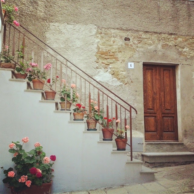 Colored flowers in pots on stairs in the historic town center