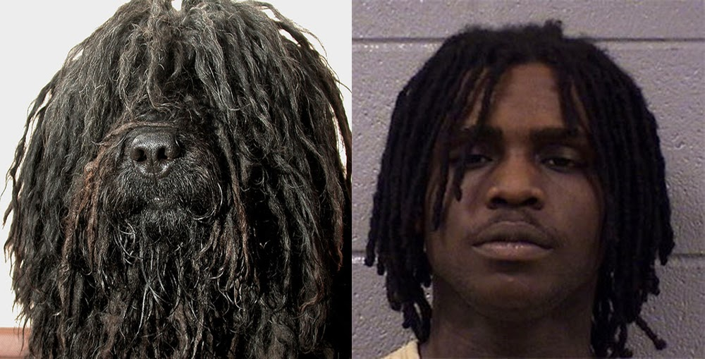 How To Get Chief Keef Dreads (video) rapper chief keef
