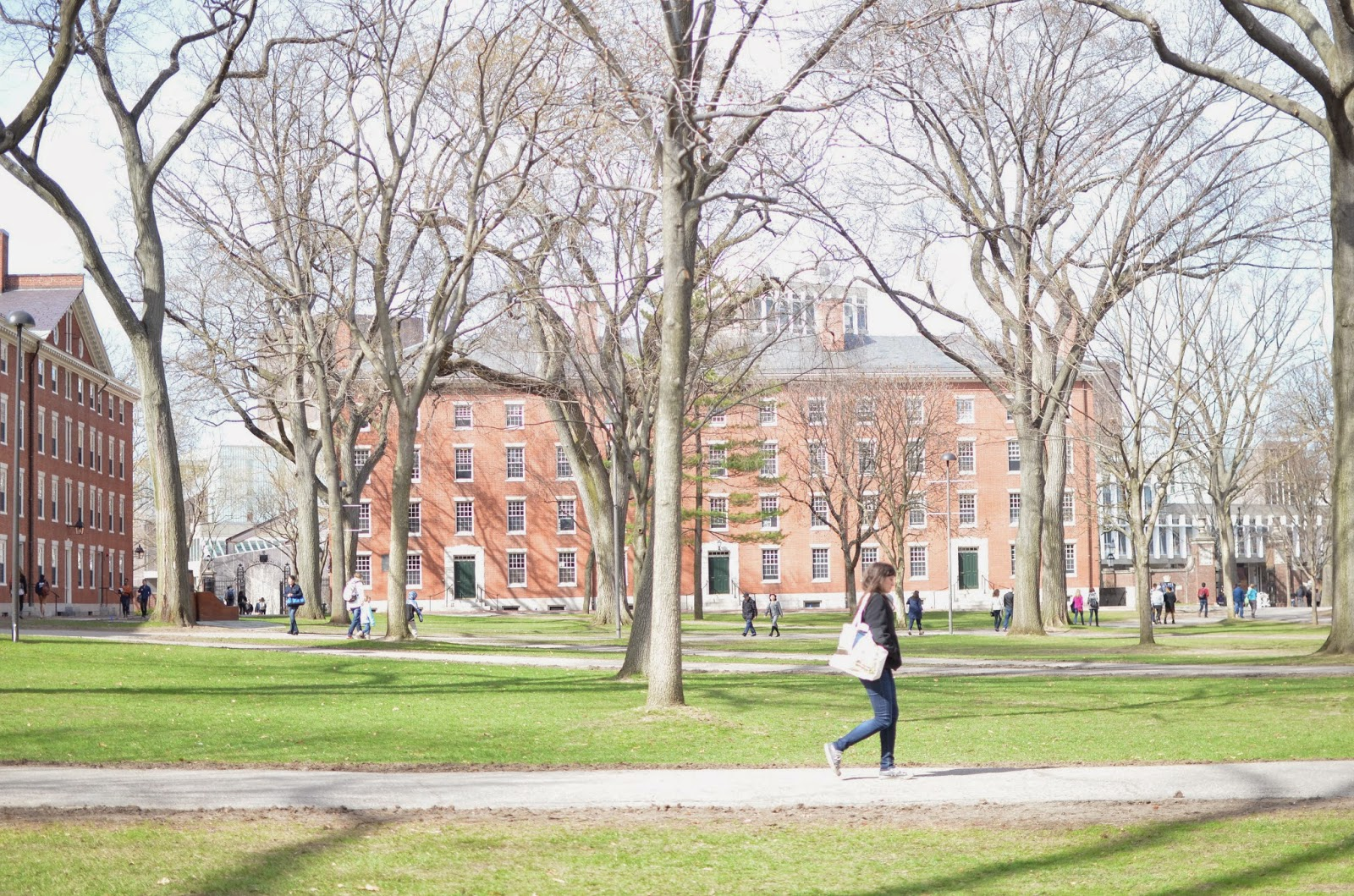 What to do in Boston, what to wear in Boston, layering in Boston, Beacon Hill, Newbury Street, springtime in Boston, Harvard, MIT, Cambridge, Shake Shack, LIttle Italy