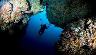 Wisata Pulau Alor