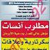 وظائف الوسيط فى القاهرة الجمعة 8 / 11 / 2013