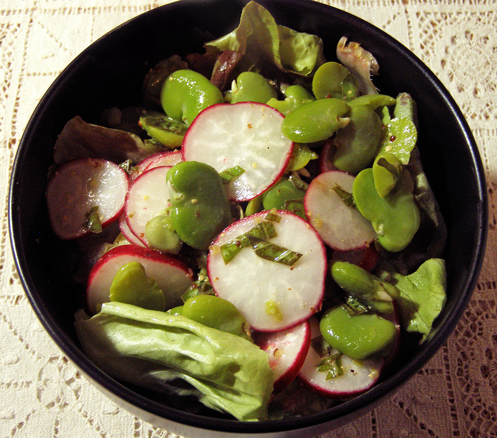 Favas and Radishes with Mustard Dressing over Lettuce