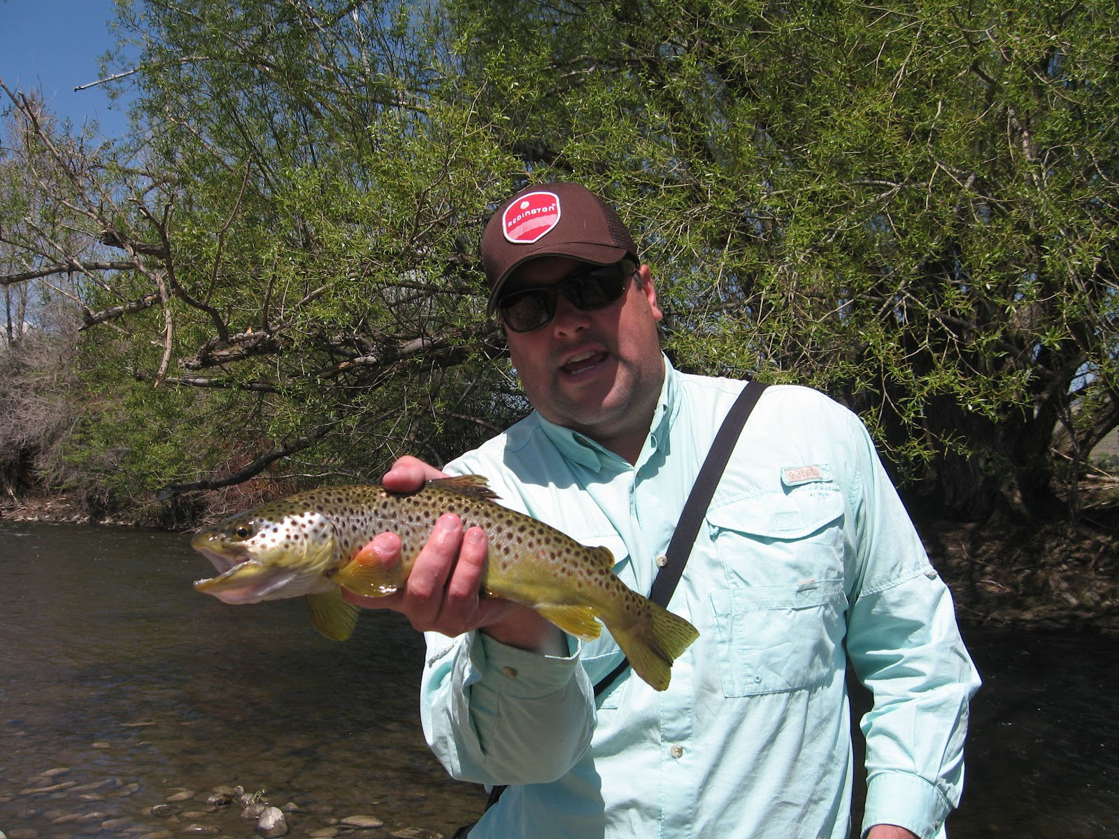Fish brain fly fishing blog low water on the weber for Is fishing good today