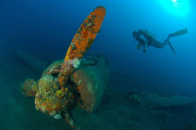 A Japaense Zero fighter wreck dive in Kimbe Bay, Papua New Guinea