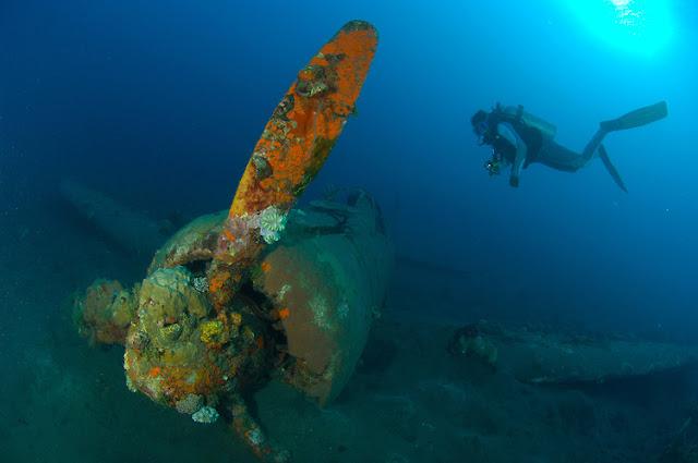 A Japaense Zero fighter wreck dive in Kimbe Bay, Papua New Guinea