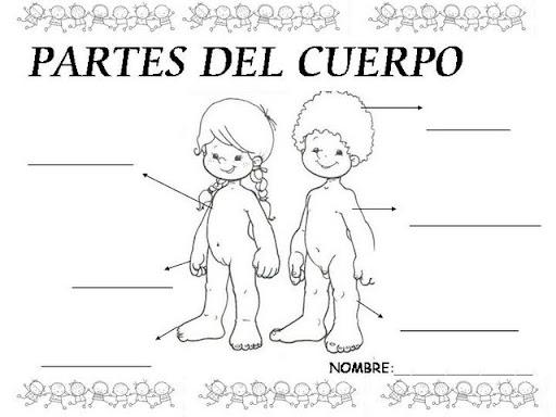 Educacion Para Niños, Proyecto De Aprendizaje El Cuerpo Humano ...