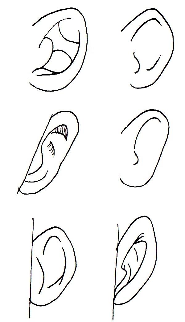 Comment dessiner des oreilles manga - Manga dessiner ...