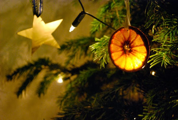 when placing the oranges on the tree try and line some fairy lights up behind them the oranges will glow - Orange Christmas Tree Decorations