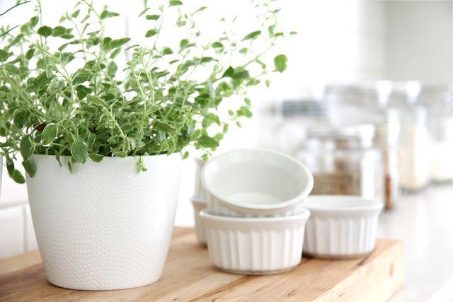 kitchen-herbs
