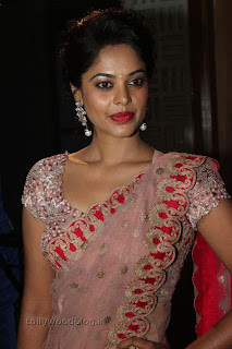 Actress Bindu Madhavi Saree Picture Stills 008.jpg