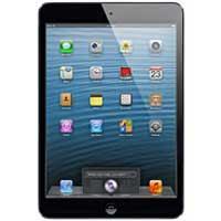 Apple iPad mini Wi-Fi + Cellular Price in Pakistan