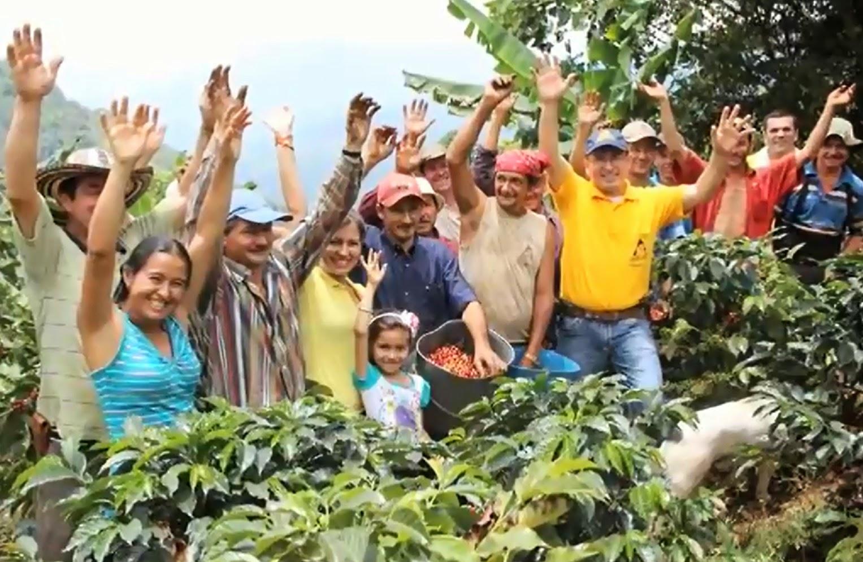 Gramalote resurge con la producción de café