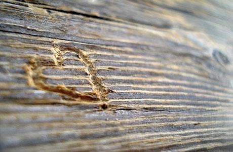 Ralaman Cinta Berdasarkan Zodiak Tahun 2012 [ www.BlogApaAja.com ]