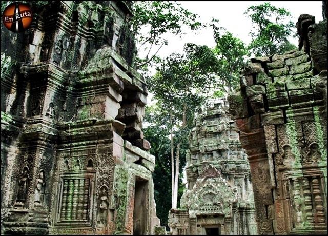 Ta-Prohm-Templos-de-Angkor_9