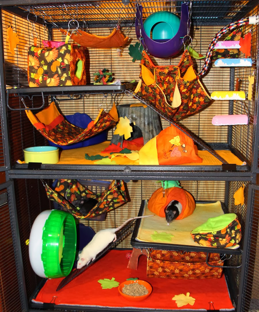 Ratropolis fall decorating ideas for Decor nation