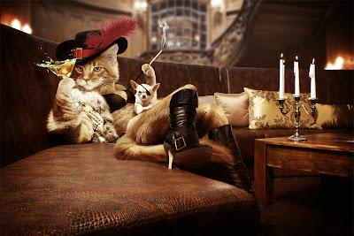 La gata con botas - Puss in boots