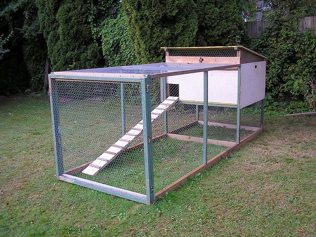 chicken house plans backyard chicken coop
