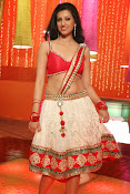 Hamsha Nandini Hot Stills-thumbnail-7