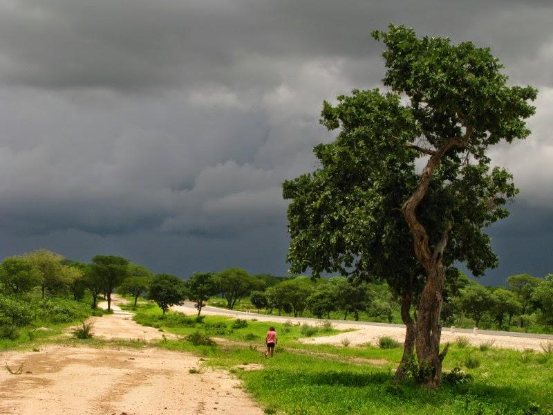 Kavango - donderwolke
