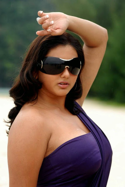 Namitha Hot Spicy Photo Shoot indianudesi.com