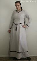 Princess Seam Dress Nursing