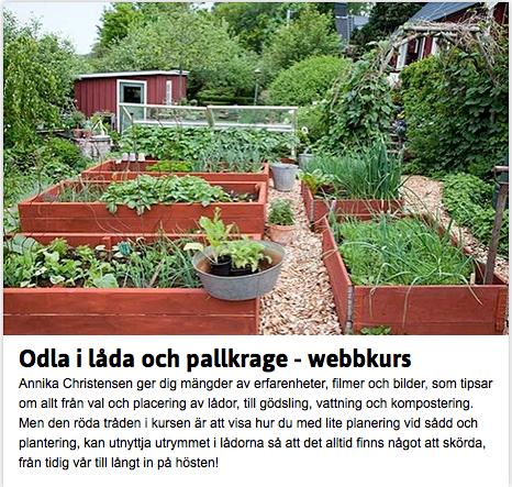 Cattis och Eiras Trädgårdsdesign: Bli odlingsexpert genom kursen ...