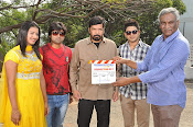 Evariki Evaru Movie Launch Photos-thumbnail-11